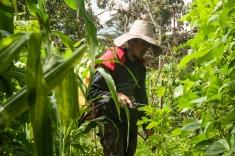 Todo a través del trabajo de la tierra mediante la Permacultura.