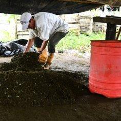Ante la imposibilidad de vivir con cultivos legales, miles de campesinos sobreviven raspando coca