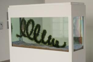 """Y tras ver la falta de héroes llegamos a la Galería de Arte Flora Ars + Natura, el hogar temporal de del 'Dibujo Habitable' de Lina Espinoza; una investigación con ecosistemas microscópicos que actúan como modelo de las contradicciones entre el """"desarrollo"""" industrial y el desequilibrio ambiental."""