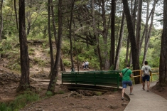 A través de esplendidos senderos se puede descubrir la gran diversidad de flora y fauna que tiene este parque, cuya belleza paisajística está además a la mano de cualquier visitante por su bajo costo, si quieren pagar, o de hacerlo libre porque también se puede.