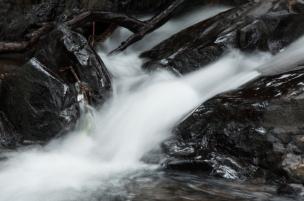 Por otro lado esta propuesta ecoturística que además da ejemplo de cómo realizar un turismo ambientalmente sostenible en Colombia, es patrimonio natural de los colombianos por el basto tejido de agua que lo consolida y que podemos disfrutar paso a paso.