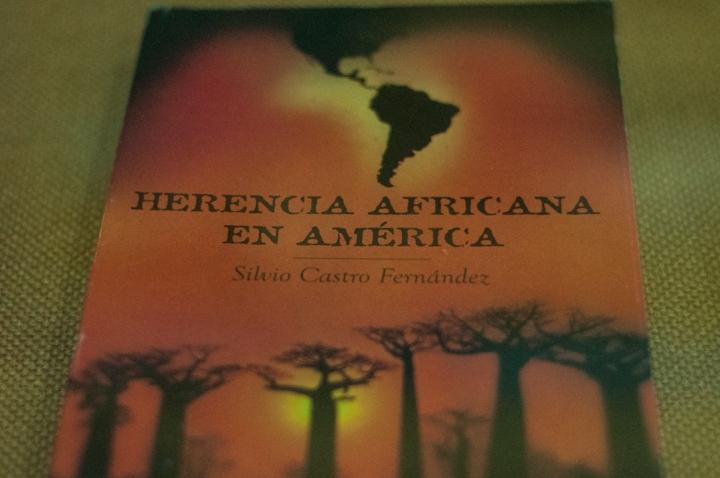 7.Donde se relatan historias sobre la rebeldía demostrada por los esclavos africanos, las sublevaciones, cimarrones, palenques y la abolición del racismo y la esclavitud, otras entre otras desgracias y ejemplos de perseverancia y superación que nos ha brindado esta raza.